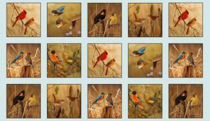 Song Birds by Elizabeth Studio - 14000 Blue - Panel