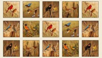 Song Birds by Elizabeth Studio - 14000 Cream - Panel