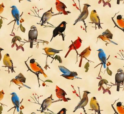 Song Birds by Elizabeth Studio - 14001 Cream
